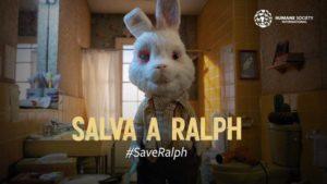 """""""Save Ralph"""", contra las pruebas cosméticas en animales"""
