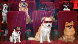 Las mejores películas para celebrar el Día Mundial del Perro